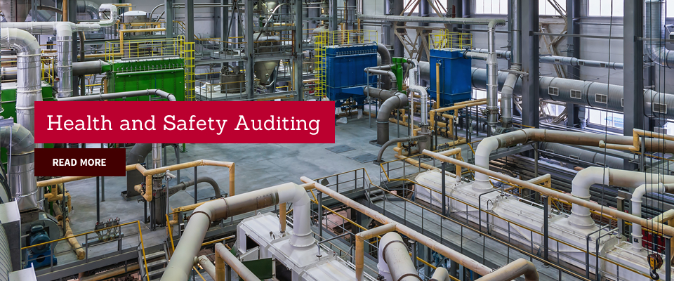 health and safety auditing