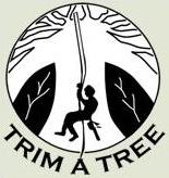 TrimaTree